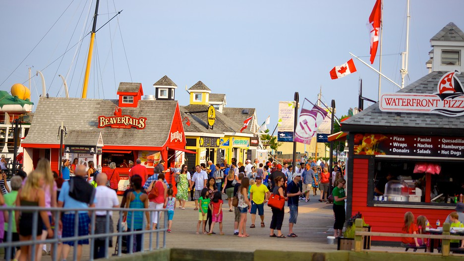 how to travel to lunenburg from downtown halifax