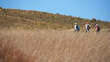 Scorpion Canyon Loop - Ventura - Oxnard - Tourism Media