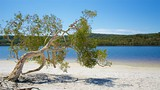 Brown Lake Conservation Area - Dunwich - Tourism Media