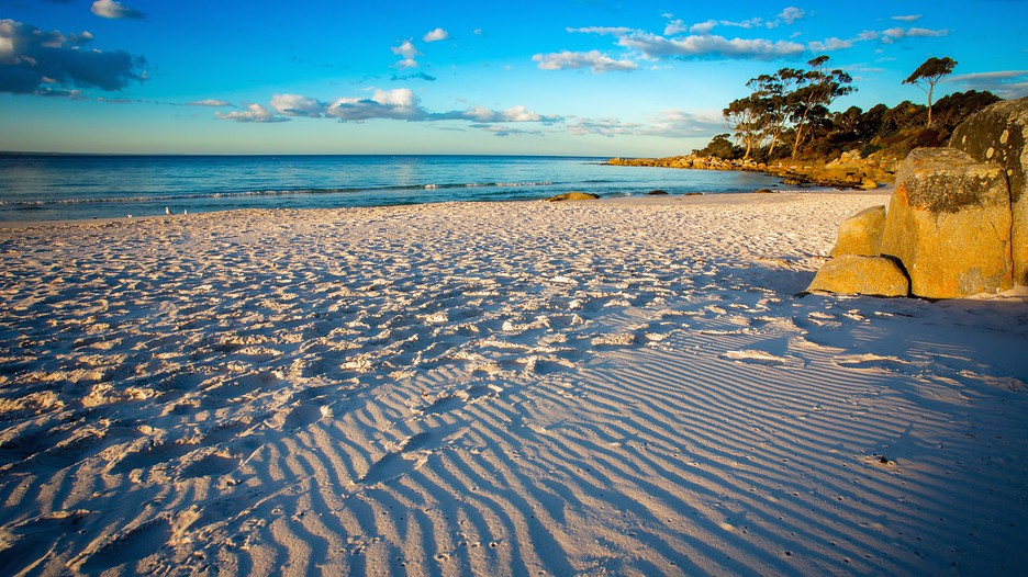 Binalong Bay Australia  city images : Bay Holidays Book Cheap Holidays to Binalong Bay and Binalong Bay ...