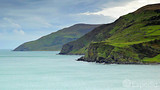 Video: Torr Head