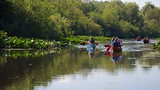 Mercer Slough Nature Park - Bellevue - Tourism Media