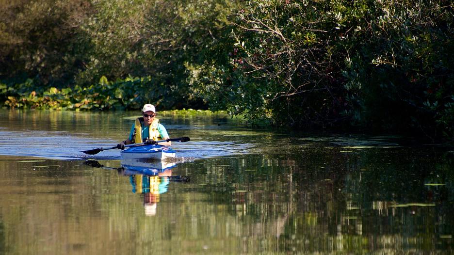Mercer Slough Nature Park Bellevue