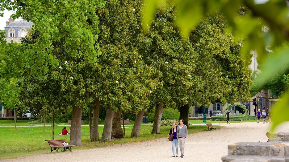 Jardin public bordeaux for Jardin bordeaux