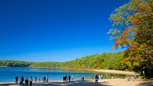 Walden Pond - Boston