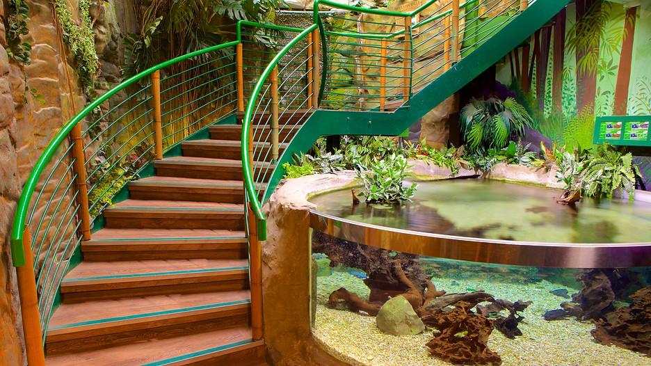 Oceanarium - Bournemouth ?Expedia.co.in