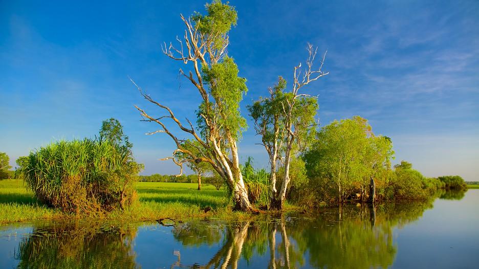 Yellow Water Billabong in Kakadu National Park - Expedia.de