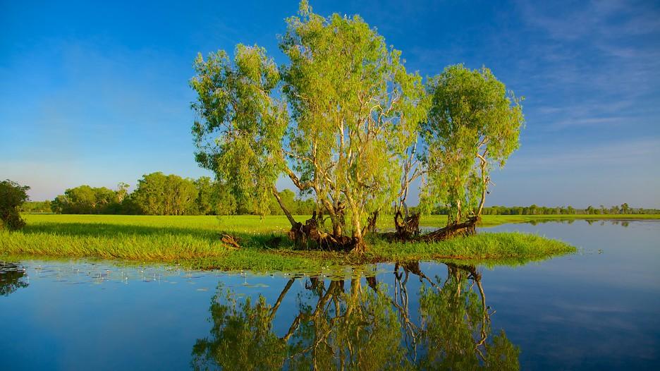 Image of Yellow Water Billabong, Kakadu National Park