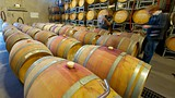 Saddler's Creek Wines - Hunter Valley - Tourism Media