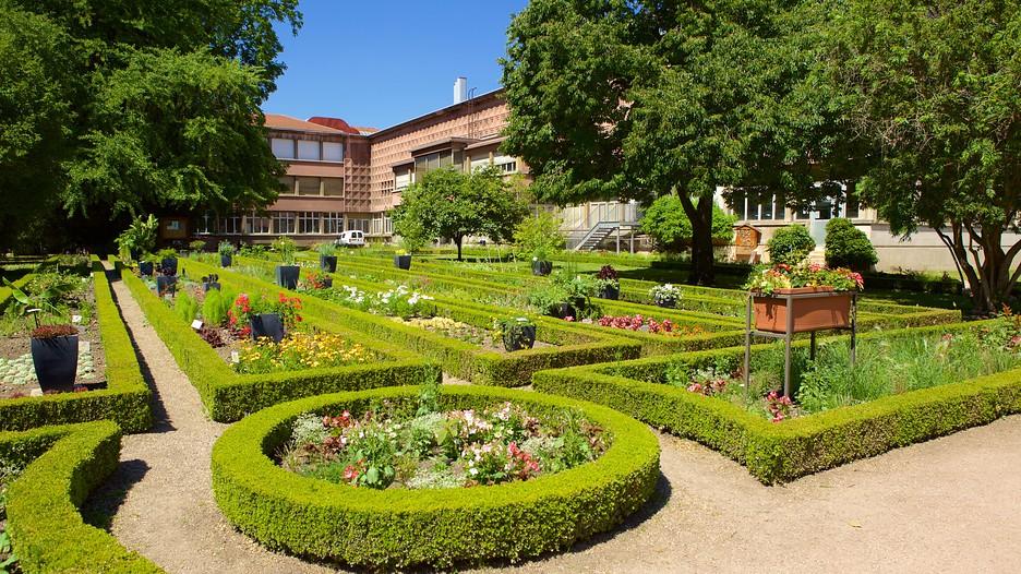 Vakanties citytrips en weekendjes weg nancy Hotel jardines de babilonia
