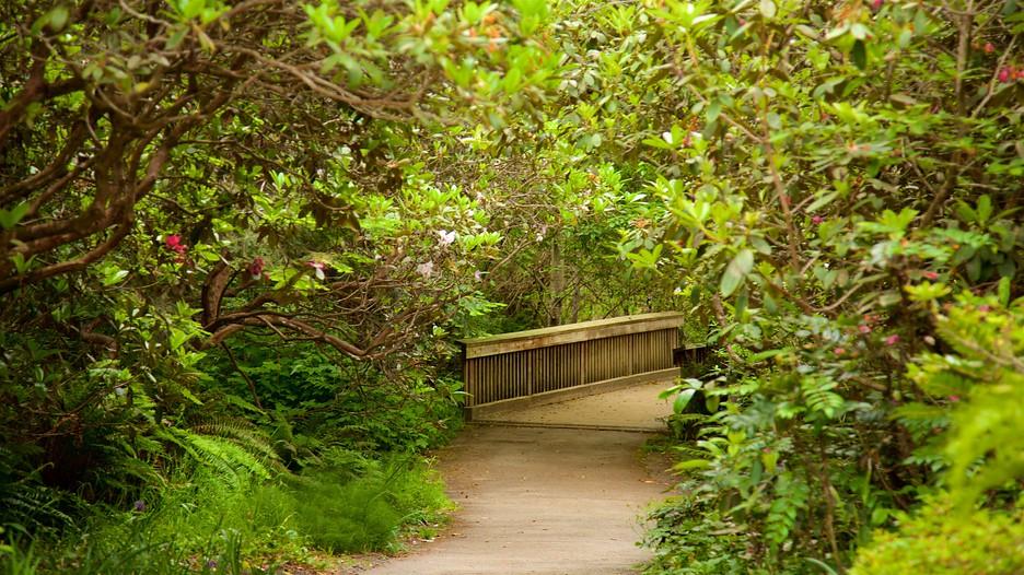 mendocino coast botanical gardens in fort bragg california expedia