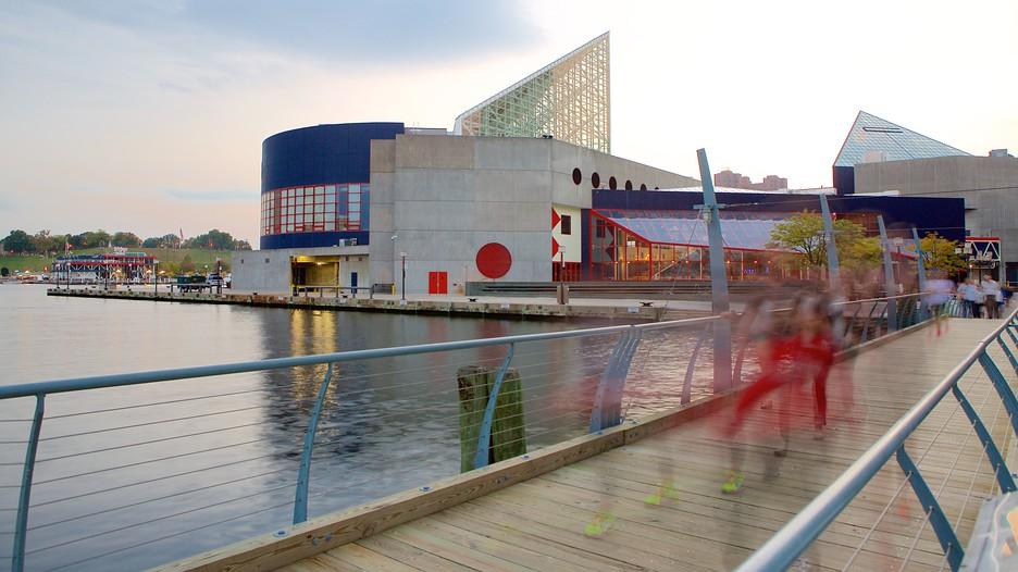 National Aquarium In Baltimore Baltimore