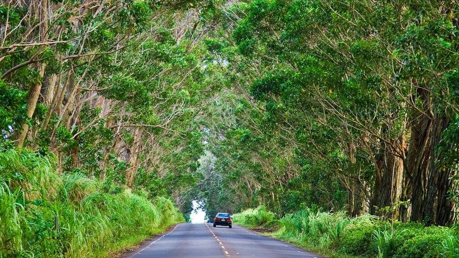 Koloa Vacations 2017 Package Amp Save Up To 603 Expedia