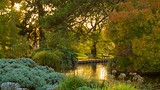 University Botanic Gardens - United Kingdom - Tourism Media