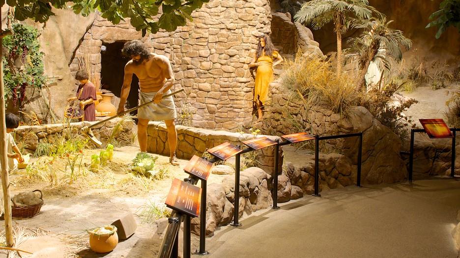 Creation Museum Hebron Kentucky Attraction