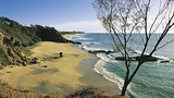 Coffs Harbour - Destination NSW