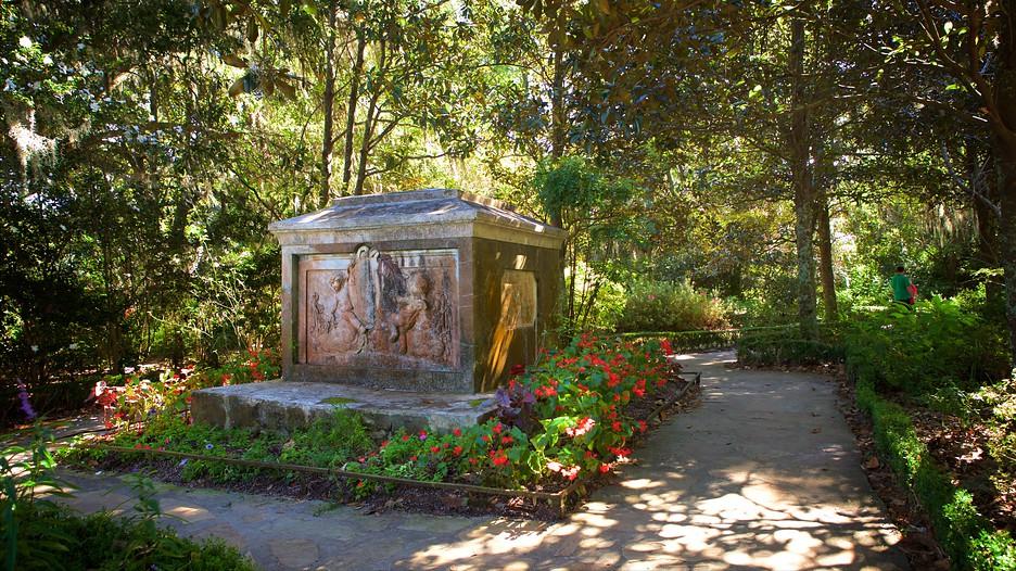 Magnolia Plantation And Gardens In Charleston South Carolina