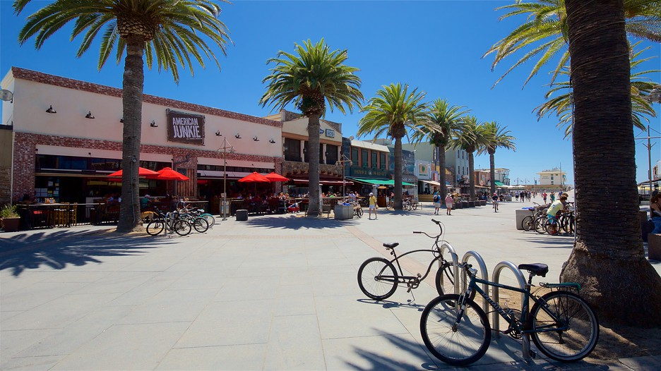 Best Seafood Restaurants In Hermosa Beach Ca