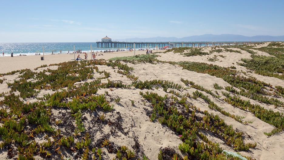 Manhattan Beach Vacation Packages 2017 Book Manhattan Beach Trips Travelocity
