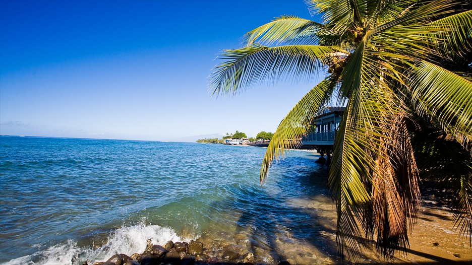 The Best Lahaina Vacation Packages 2017 Save Up To C590 On Our Deals Expedia Ca