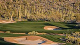 Marana - The Golf Club at Dove Mountain/Discover Marana