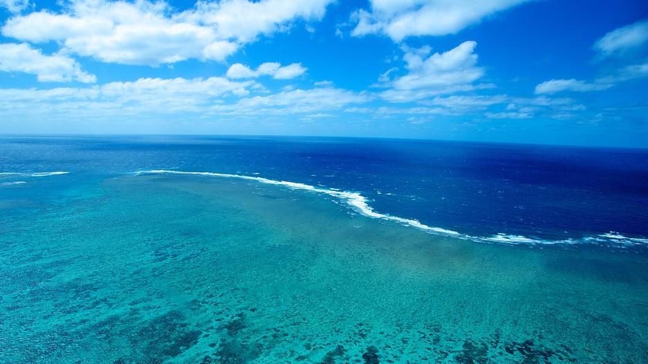 Great Barrier Reef In Cairns Queensland Expedia Ca