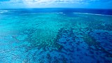 Great Barrier Reef - Cairns - Tourism Media