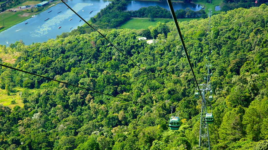 Skyrail Rainforest Cableway - Cairns  Expedia.com.my