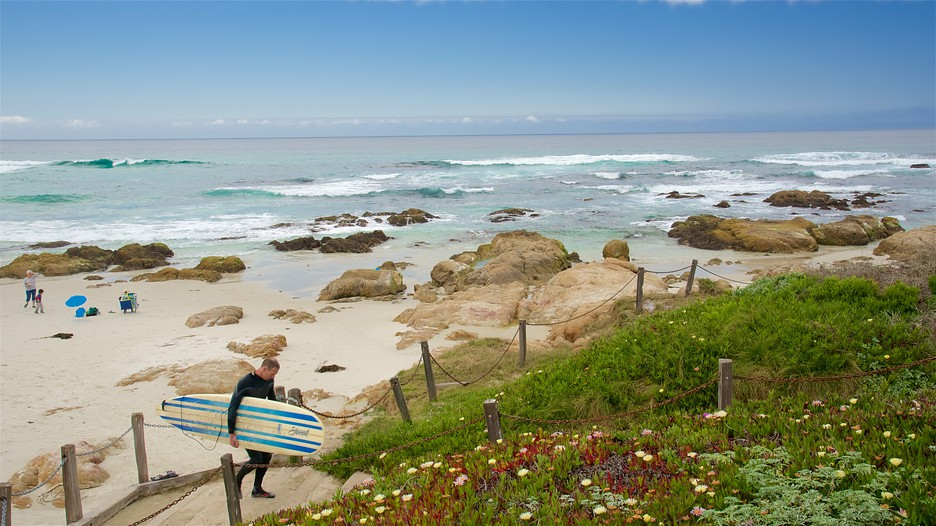 Monterey Asilomar State Beach
