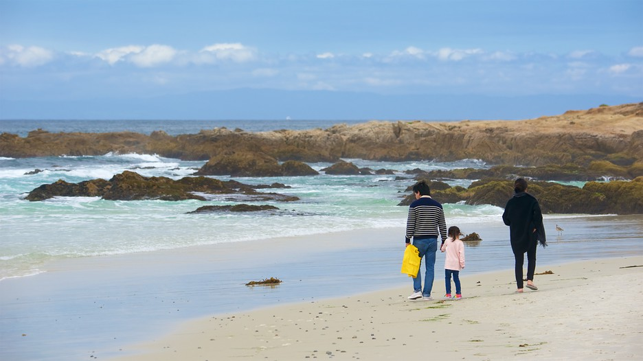 Dog Friendly Hotels Monterey Pacific Grove