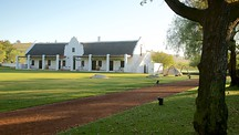 Spier Wine Estate - Cape Town