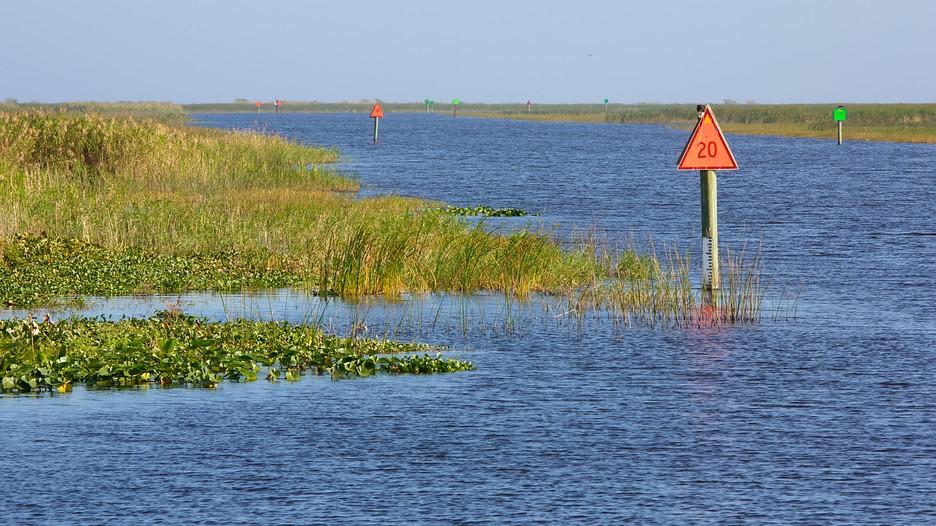 Okeechobee (FL) United States  City new picture : Lake Okeechobee in Fort Lauderdale, Florida | Expedia.ca