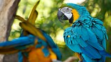 Santa Ana Zoo - Orange County - Tourism Media