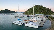 Picton Harbour - Picton