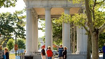 Plymouth Rock - Plymouth