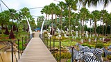 Showing item 33 of 59. Nong Nooch Tropical Botanical Garden - Pattaya - Tourism Media