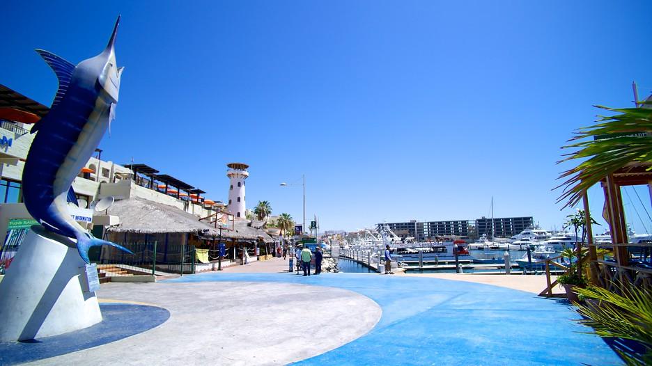 Marina Cabo San Lucas In Cabo San Lucas Baja California