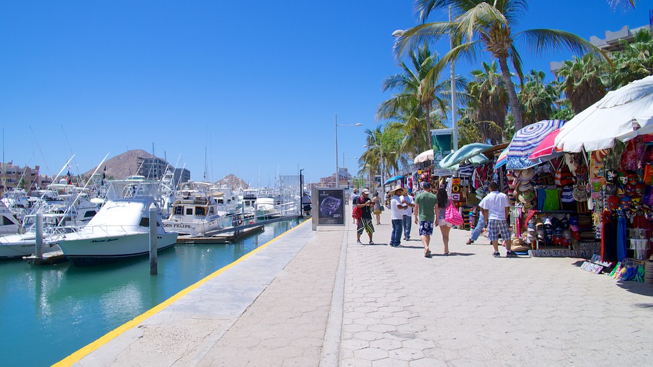 Image result for Cabo San Lucas Marina