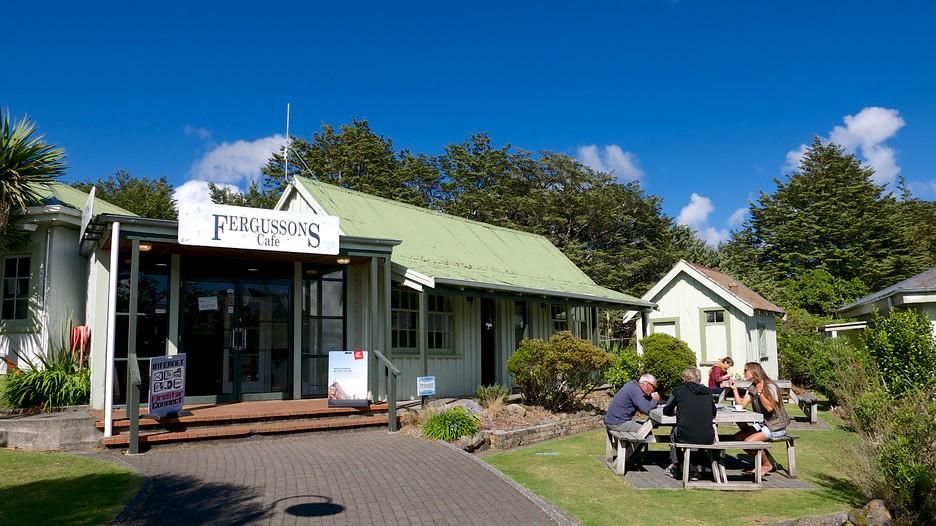 Tongariro National Park Hotels