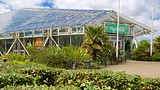 Plantasia - Swansea - Tourism Media