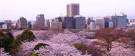 fukuoka japan hotel: