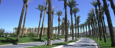 Uptown Palm Springs hotels