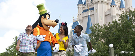 Walt Disney World® area hotels