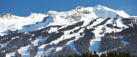 Blackcomb hotels
