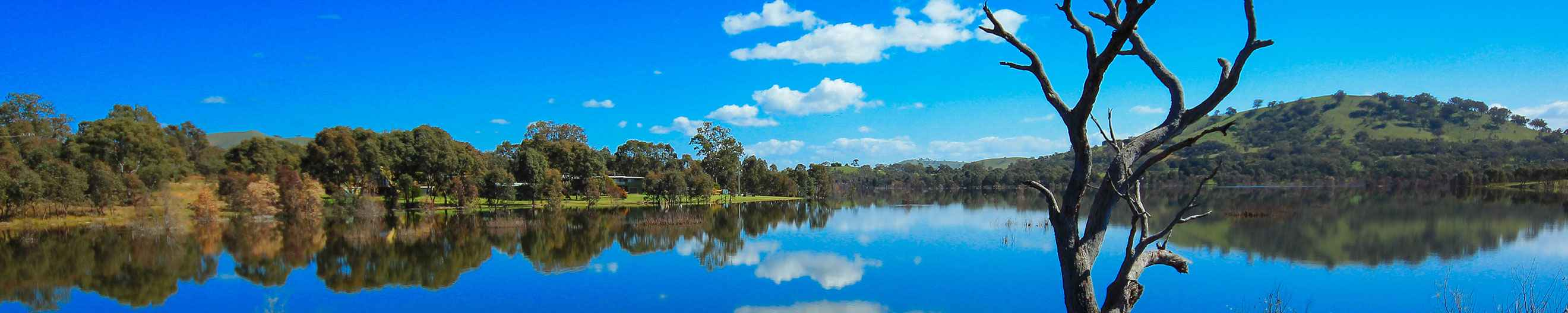 Car Hire Shepparton Exclusive Deals On Cheap Car Hire In