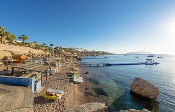 Private beach, beach towels, beach massages, beach bar