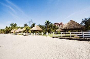 Ubicación a pie de playa y bar en la playa