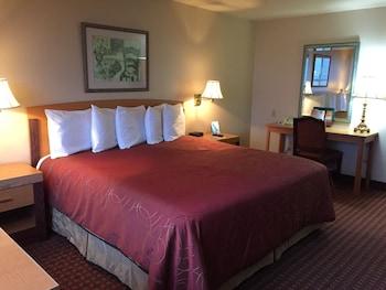 Daunenbettdecken, Pillowtop-Betten, Schreibtisch, Verdunkelungsvorhänge