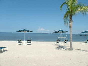 On the beach, white sand, beach yoga, beach volleyball