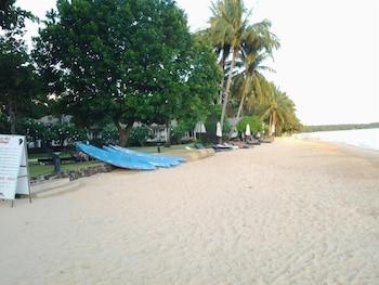 Ubicación a pie de playa, tumbonas, toallas de playa y kayak